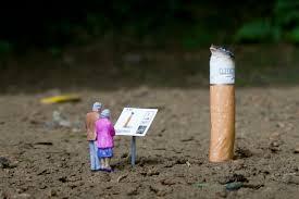 the life of a ciggi