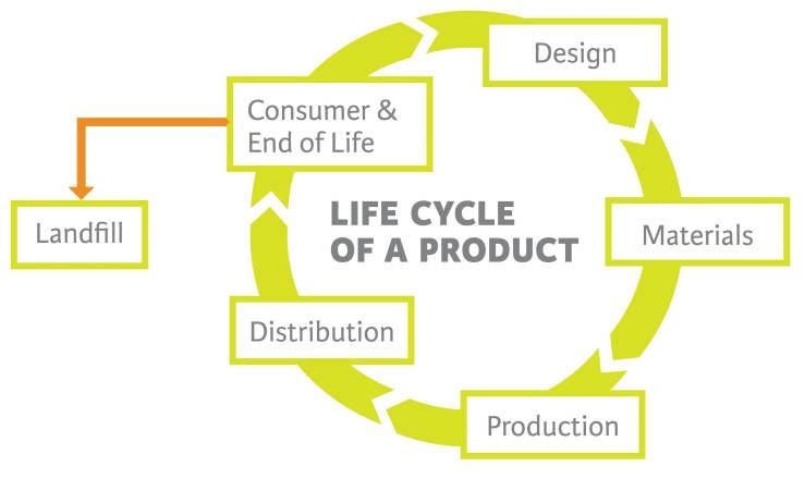 life_cycle